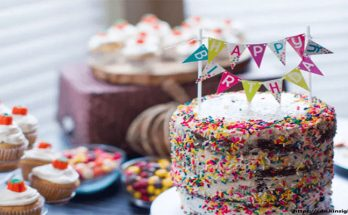 Alternatives To A Professionally Made Birthday Cake